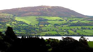 Shannon River Castleconnell