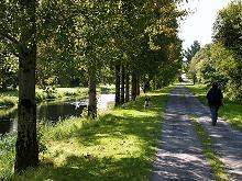 Loop Walk O'Briensbridge